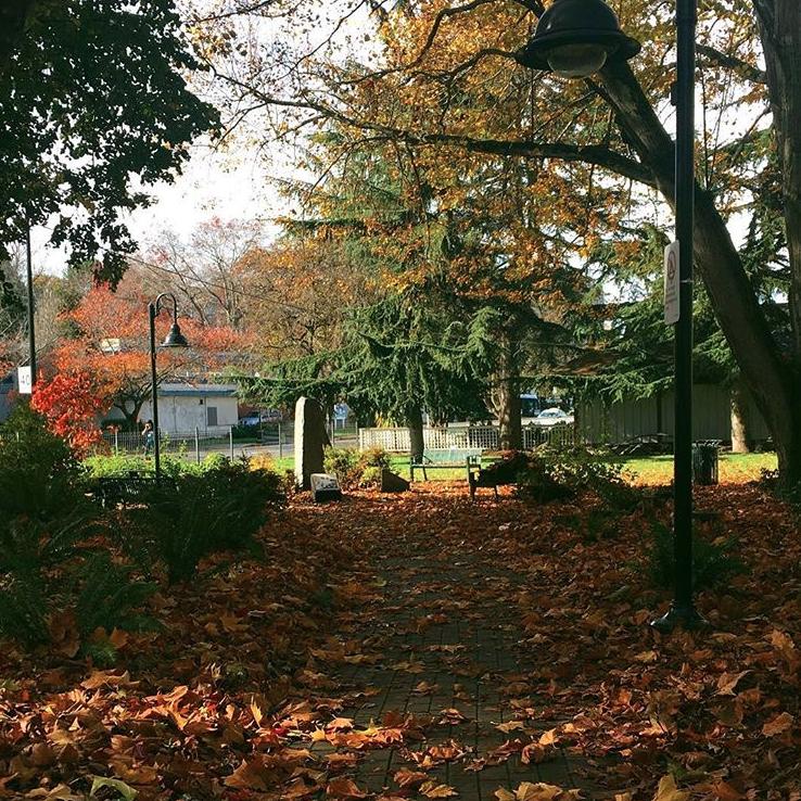 Fall Victoria, BC
