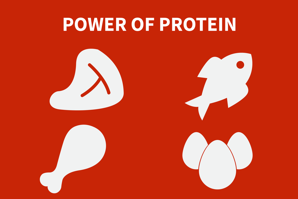 Power Of Protein For Leaders Connected Ec Leadership Wellness