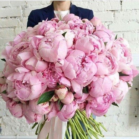 Pink Peonies Pinterest.jpg