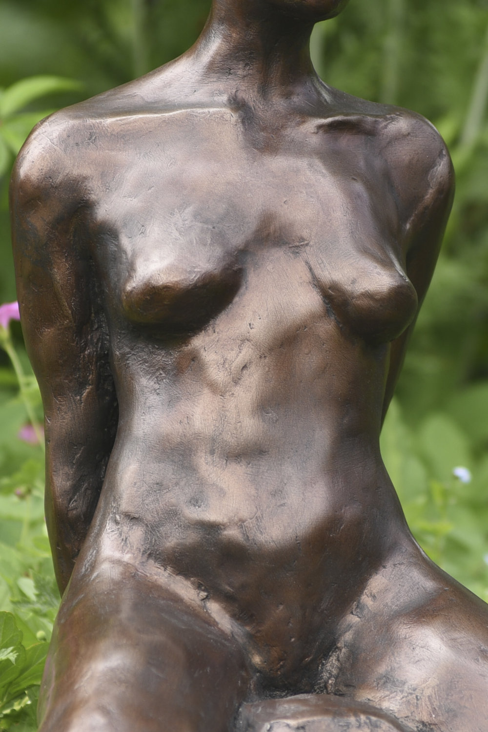 Bronze statue torso showing detail of patina.jpg