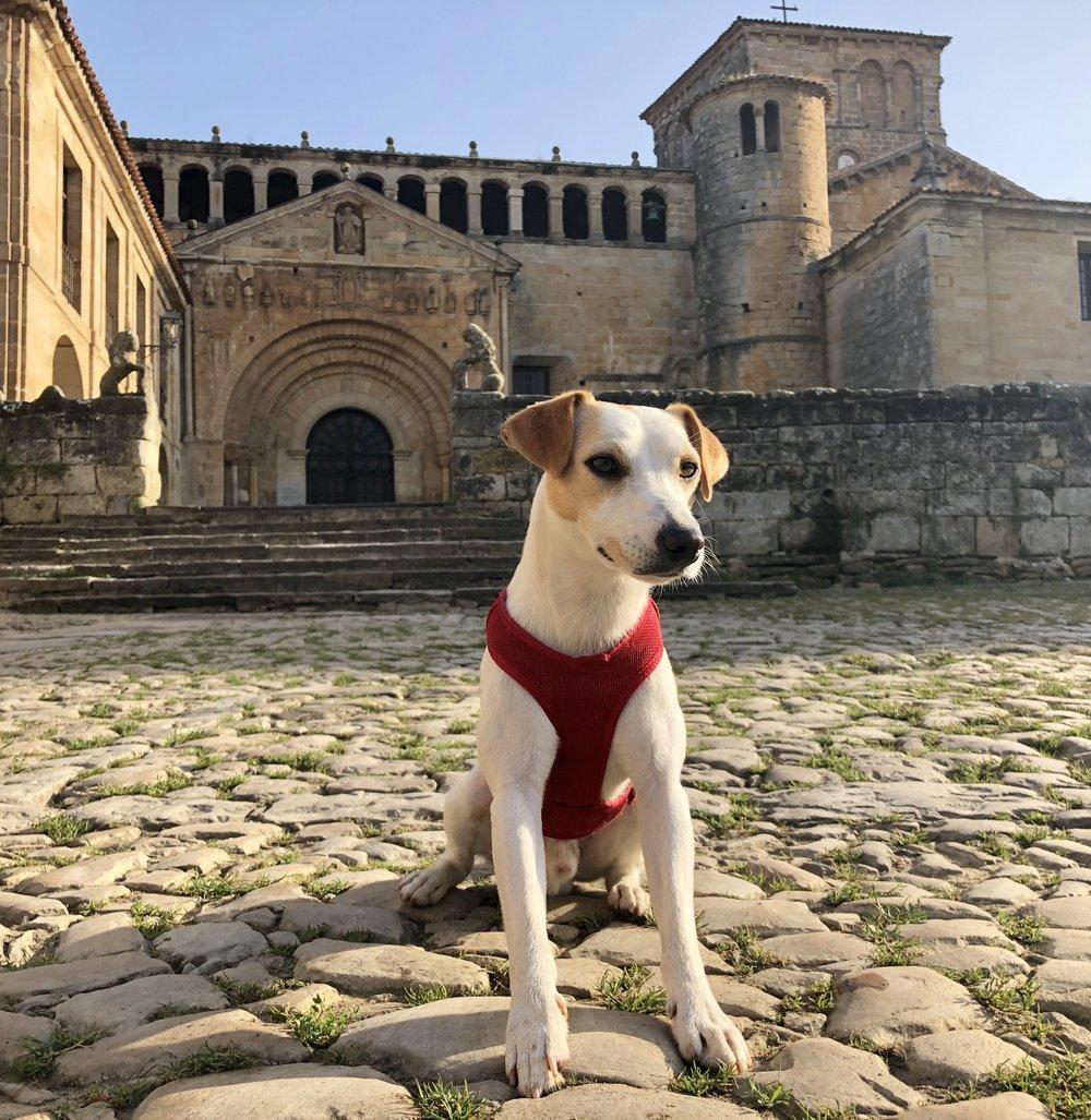 Outside the collegiate church of Santillana del Mar.