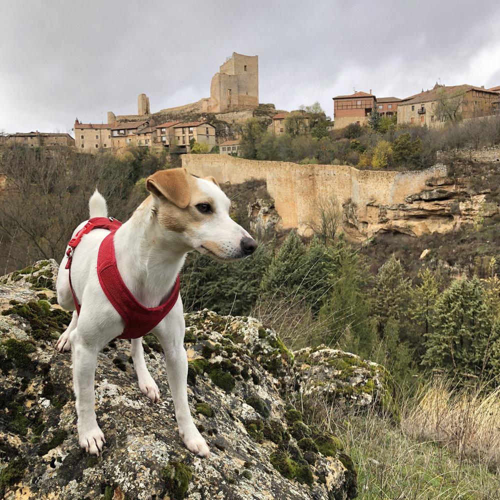 In the medieval village of Calatañazor.