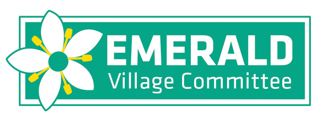 Image result for emerald village committee
