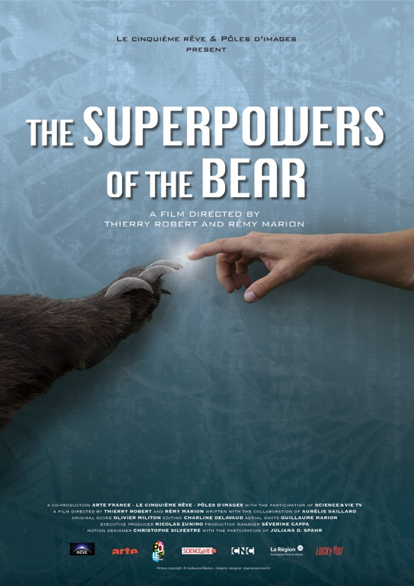 Documentary Feature - Juliana's illustrations are animated and featured in the international documentary dedicated to the fascinating adaptations of the Scandinavian brown bear Ursus arctos.