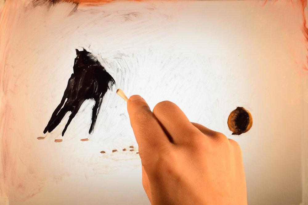 horse_jumping.jpg