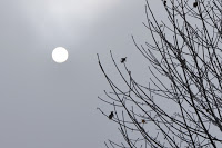 seasonal affective disorder and hypnotherapy