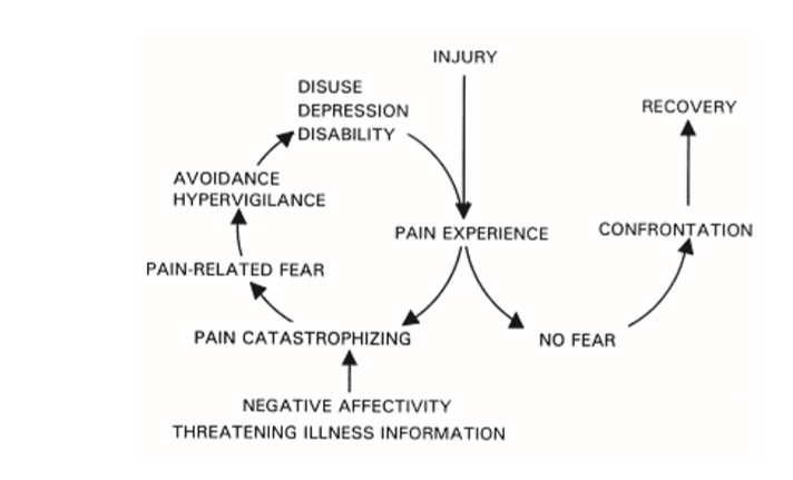 fear avoidance pain.png