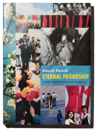 Anouck Durand,《Eternal Friendship.》出版社:Siglio,100頁,圖片貫穿全書。