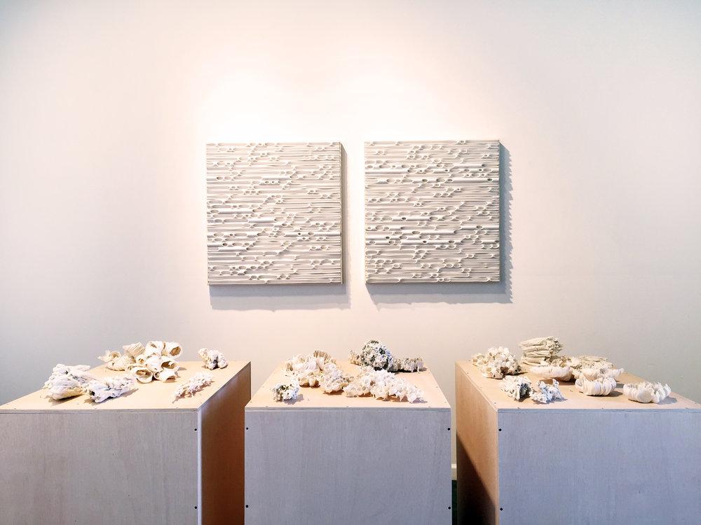 Porcelain & Erosion.JPG