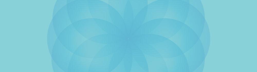 webdivider7.jpg