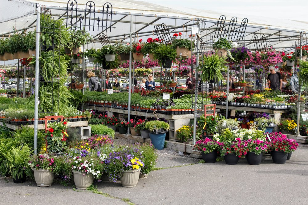 Ash's Garden Farm has been bringing plants fresh from the farms of Bucks County since 1870.