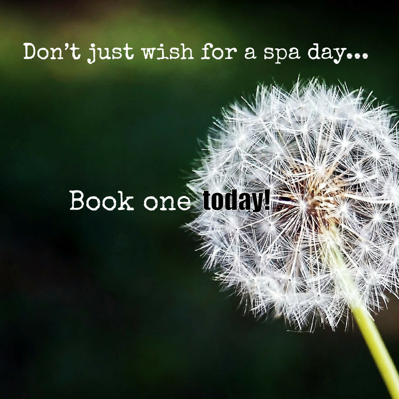Dont-just-wish-for-a-spa-day-book-one-today-BOOSTABLE.jpg
