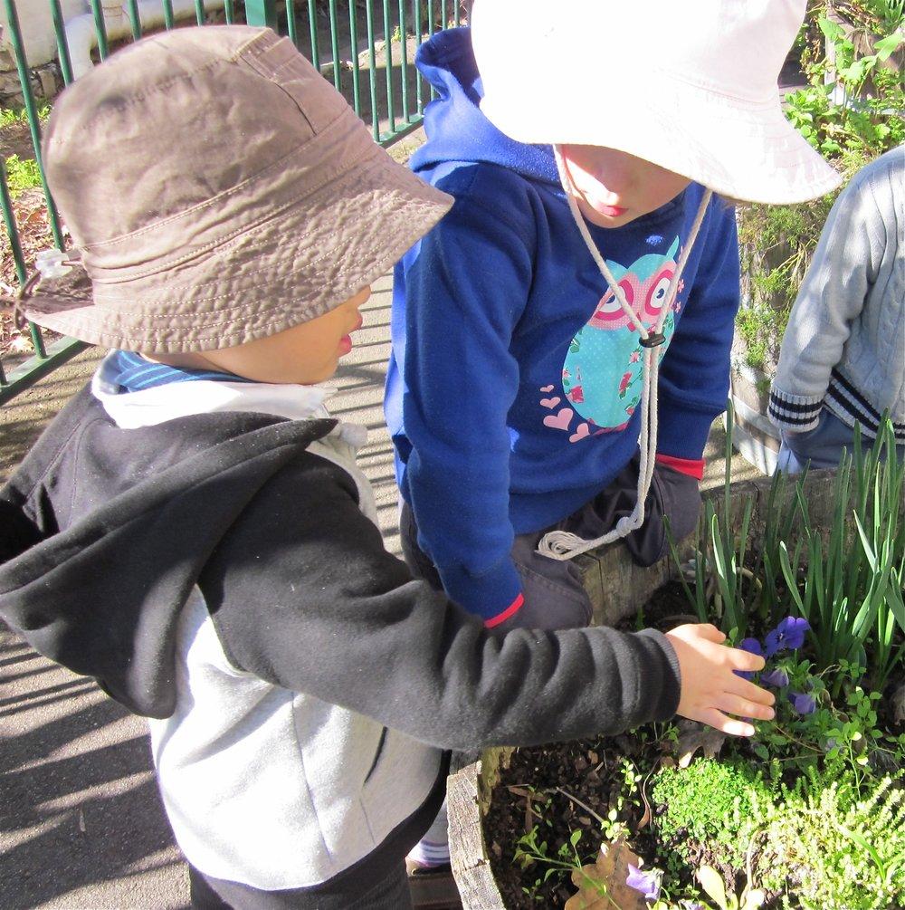 Children looking at flower.jpg