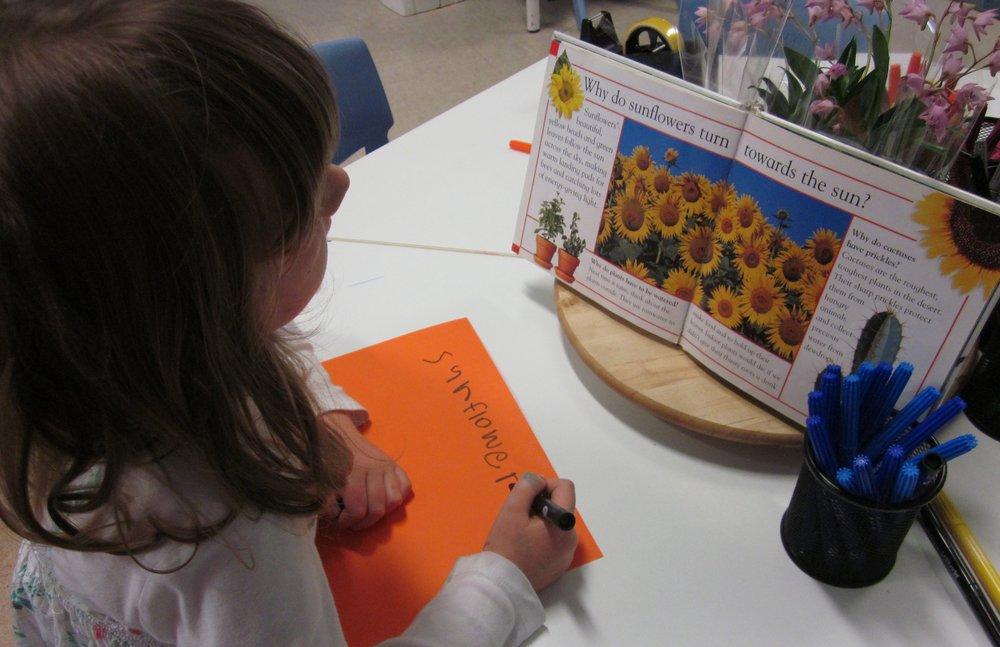 Writing sunflowers.jpg