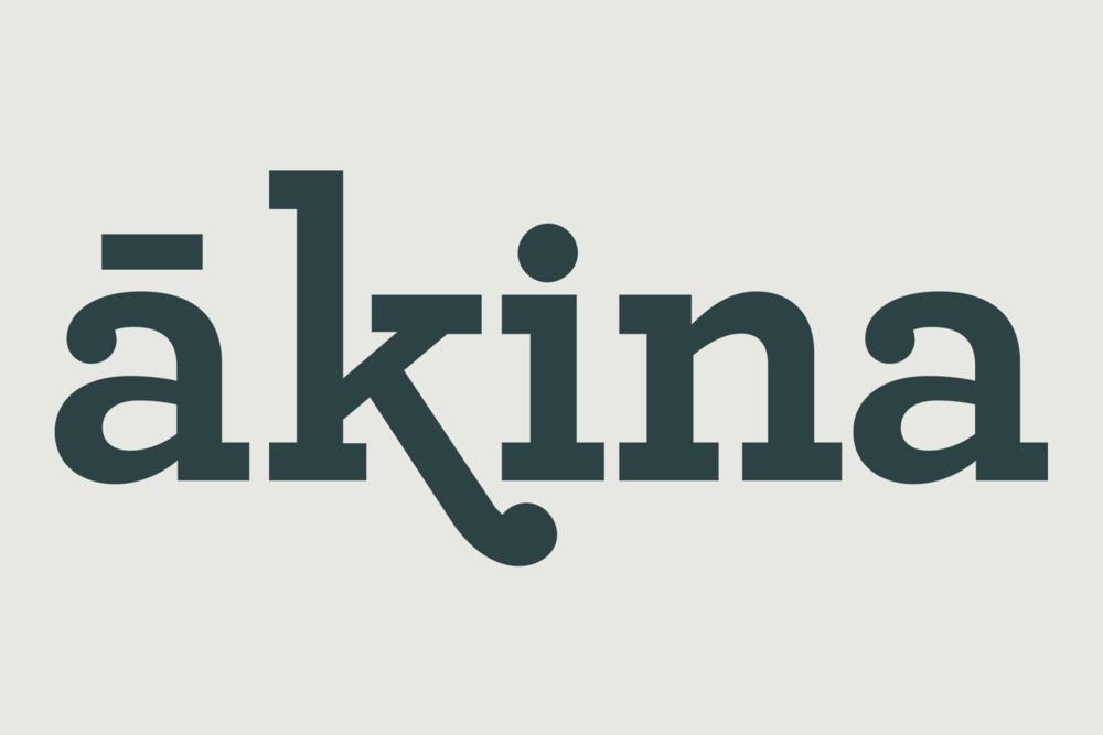 Akina logo.png