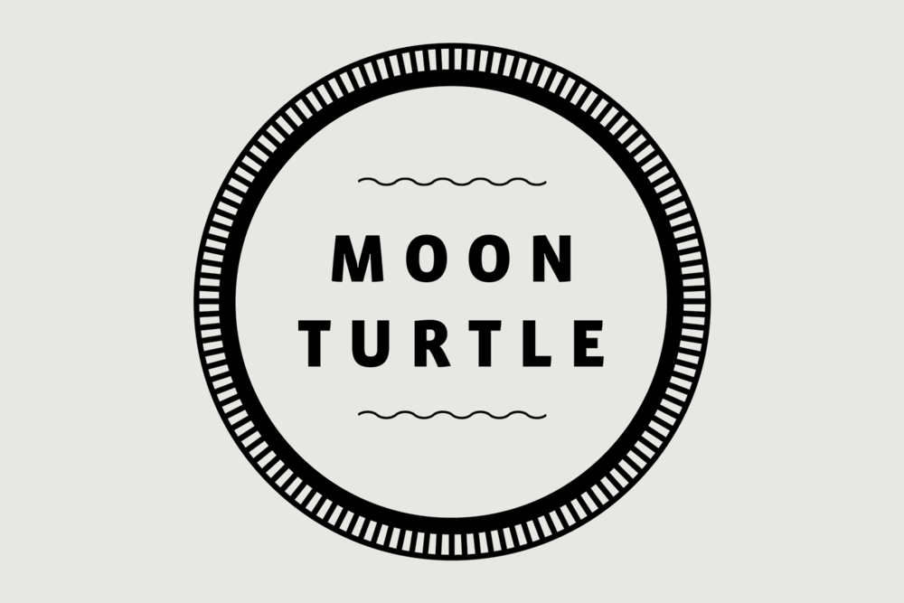 Moon Turtle for website.png