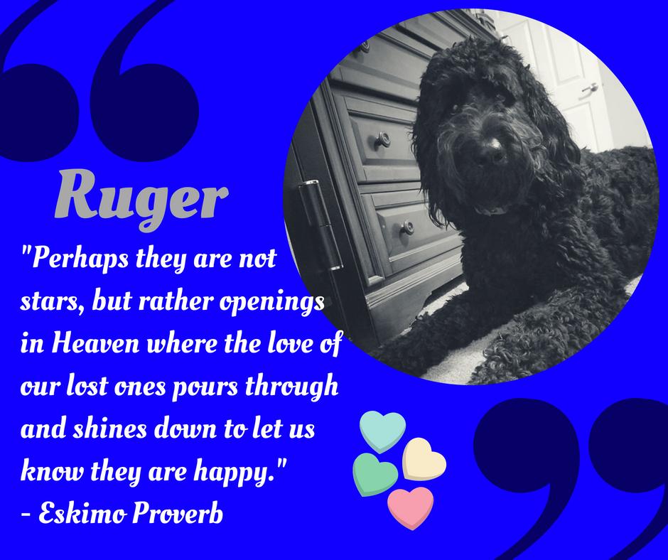 ruger2.png