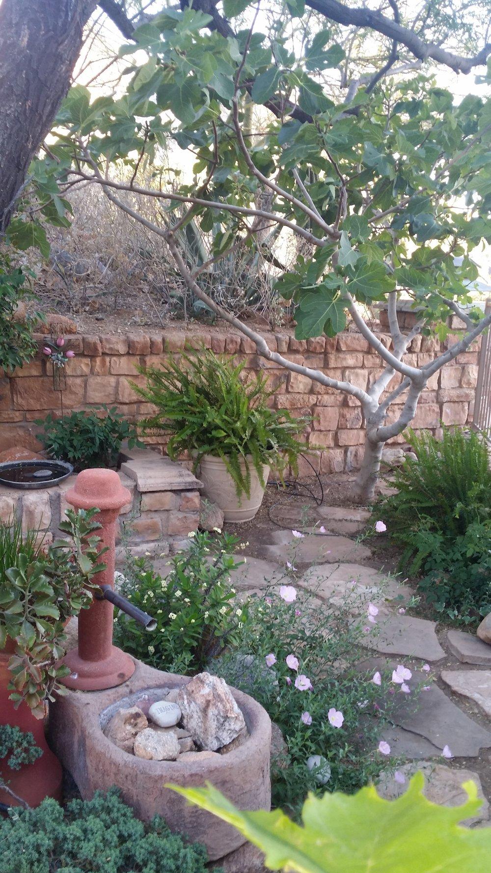Prayer Garden 5.jpg