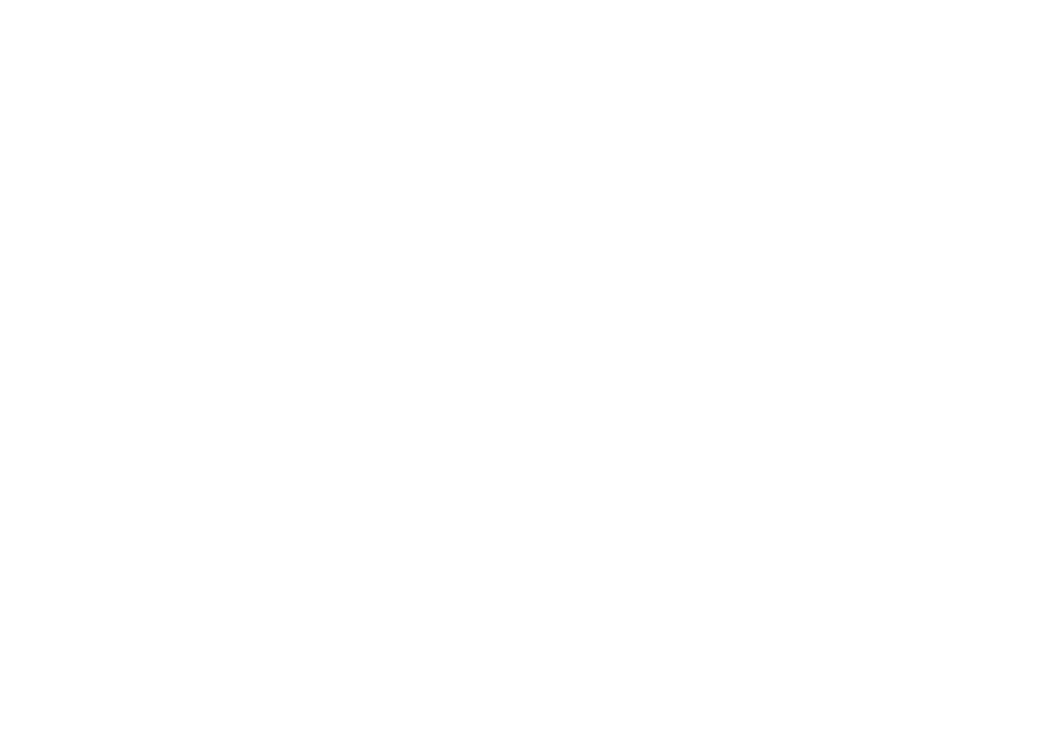 IRON SALON