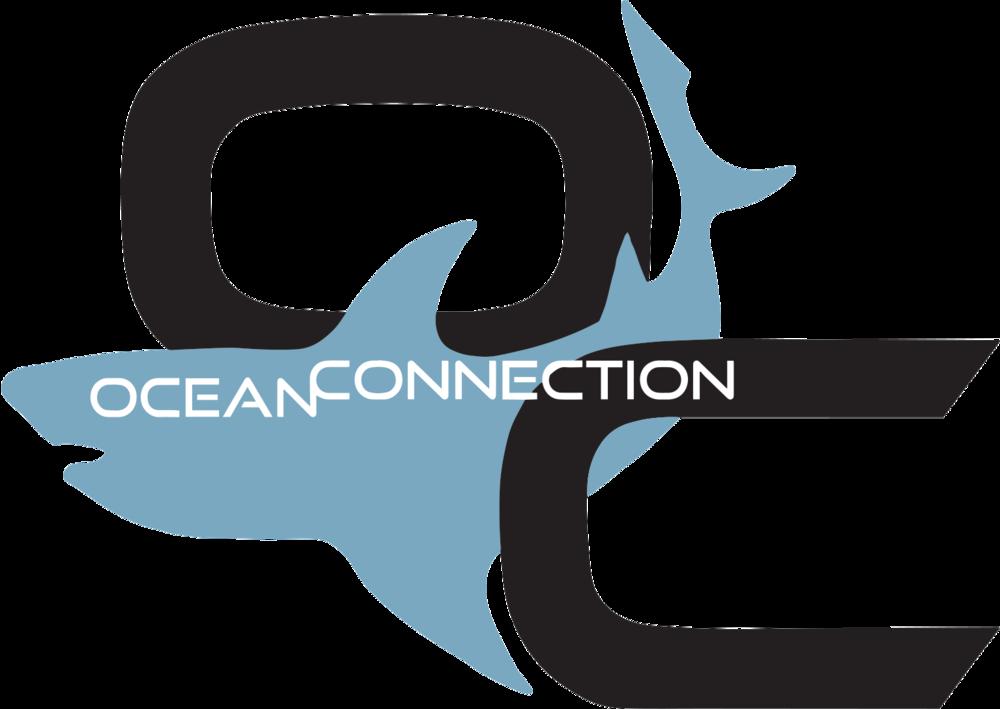 OCEAN CONNECTION LOGO VECTOR FILExxx.png