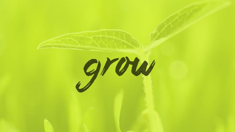 blog hdr grow.jpeg