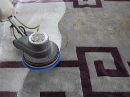 wright marketing (area rug cleaning power scrubbing).jpg