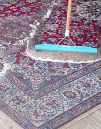 wright marketing (area rug Cleaning raking).jpg