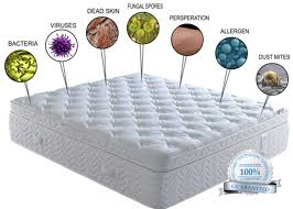 wright marketing (mattress cleaning do you know whats in your mattress).jpg