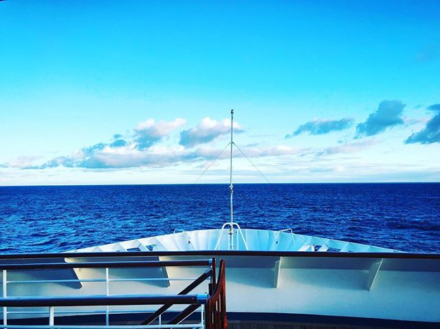 I N S A N E 🌴 V I E W ⠀⠀⠀⠀⠀⠀⠀⠀⠀ ___ . . . . ___ #comesailaway #blueskies #oceanview #cruising  #Fascinators #travel #explore #wanderlust #adventure #bubblesthetourist #CarnivalCruiselines #CarnivalFascination #CarnivalEntertainment #letstravelmore #whynot #photography #travelblogger #travellife #lifestyle