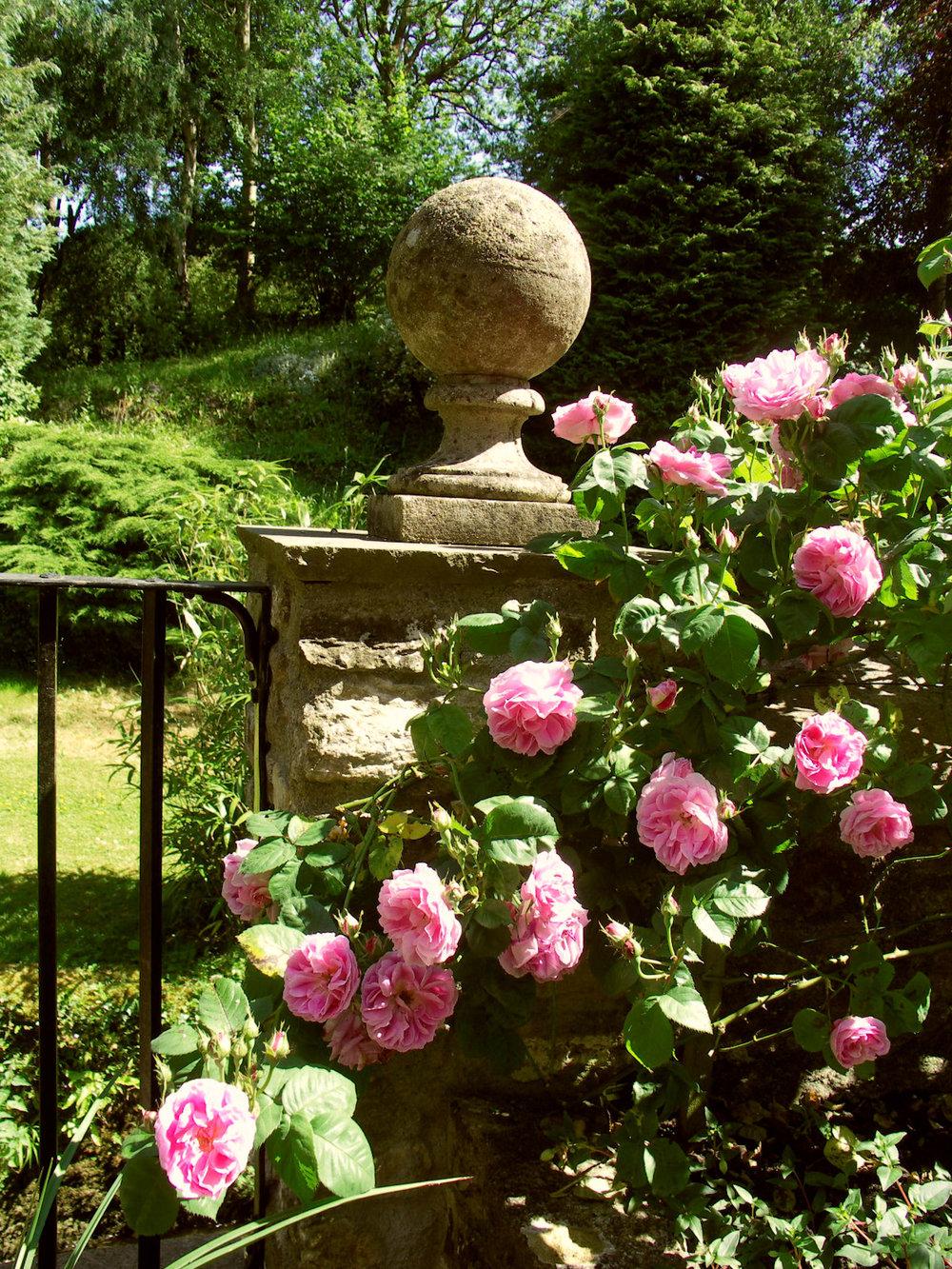 Roses & pillar.jpg