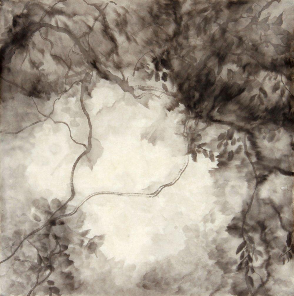 IA-Tree Shadows  II;70x70cm;2018 ($30,000).jpg