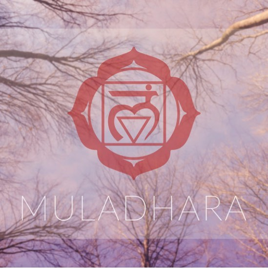 I am Here. I am Whole. I am Grounded.  The root chakra reminds us to call on the power of Gaia and her ability to hold and heal. Her energy grounds us and supports our wandering seeking hearts. #rootchakra #moveme