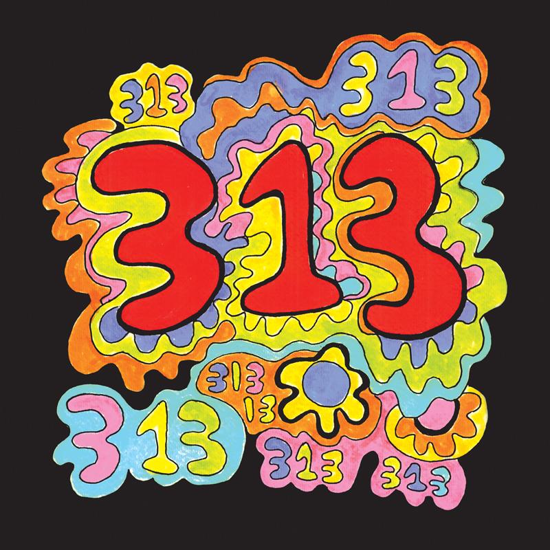313 Cover.jpg