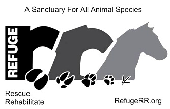Refuge RR  (Rescue, Rehabilitate) is a provincially registered, charitable organization which rescues, rehabilitates and provides permanent homes for abused, neglected and/or abandoned animals.