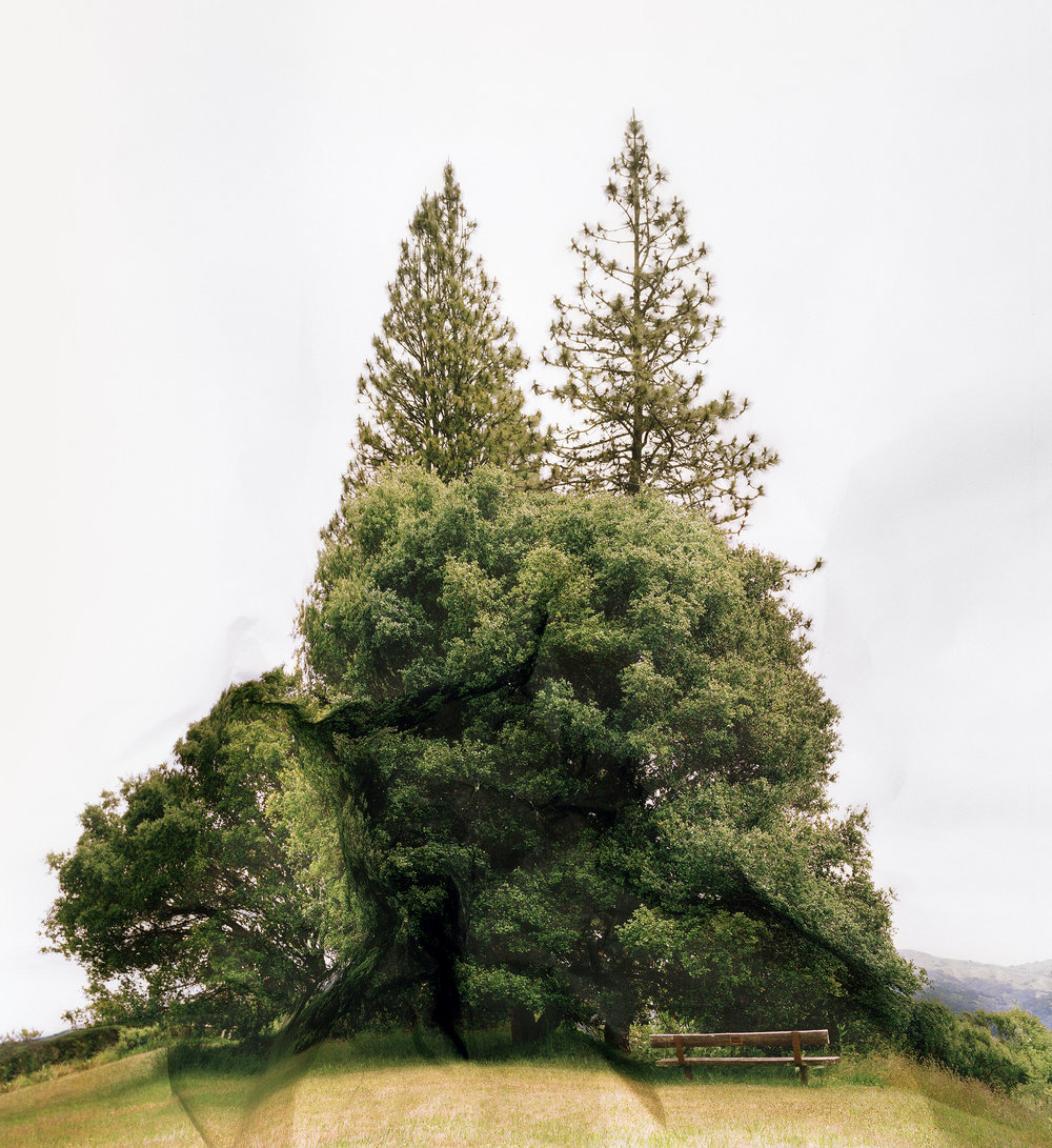 Laura Plageman,  Response to Inspiration Point, California , 2011  Digital pigment print, 24 x 22 in, edition of 10   Inquire