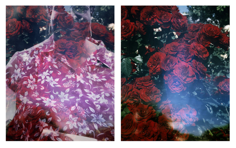 Connie Samaras,  The Past Is Another Planet: Huntington Rose Garden and OEB 7350, Photograph of Octavia E. Butler, Washington, 2001 , 2016  Digital pigment prints (diptych), 30 x 24 each, edition of 5   Inquire