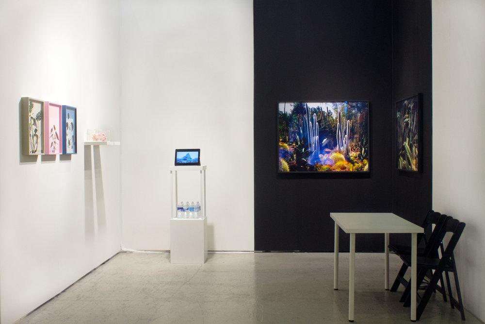 Alma Haser, Jonas N.T. Becker, and Connie Samaras at Photo LA 2019    Inquire