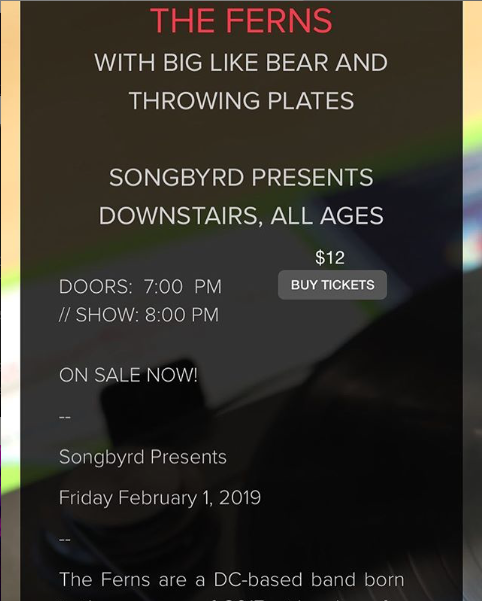***SOLD OUT!***  2.1.19 @ Songbyrd w/ Big Like Bear and Throwing Plates