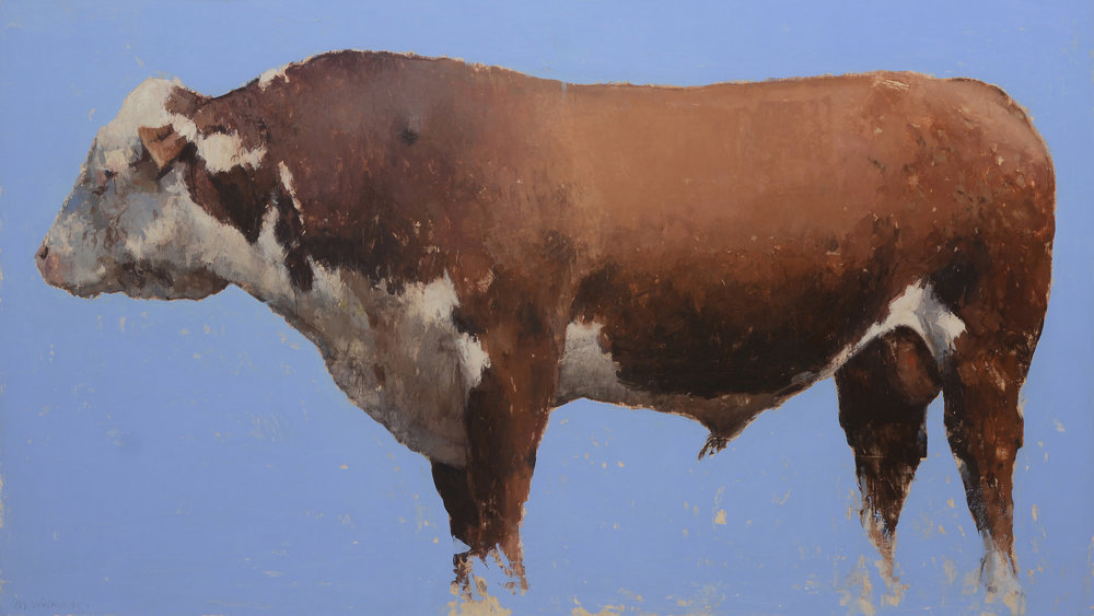 A Big Old Red and White Hereford Bull.jpg