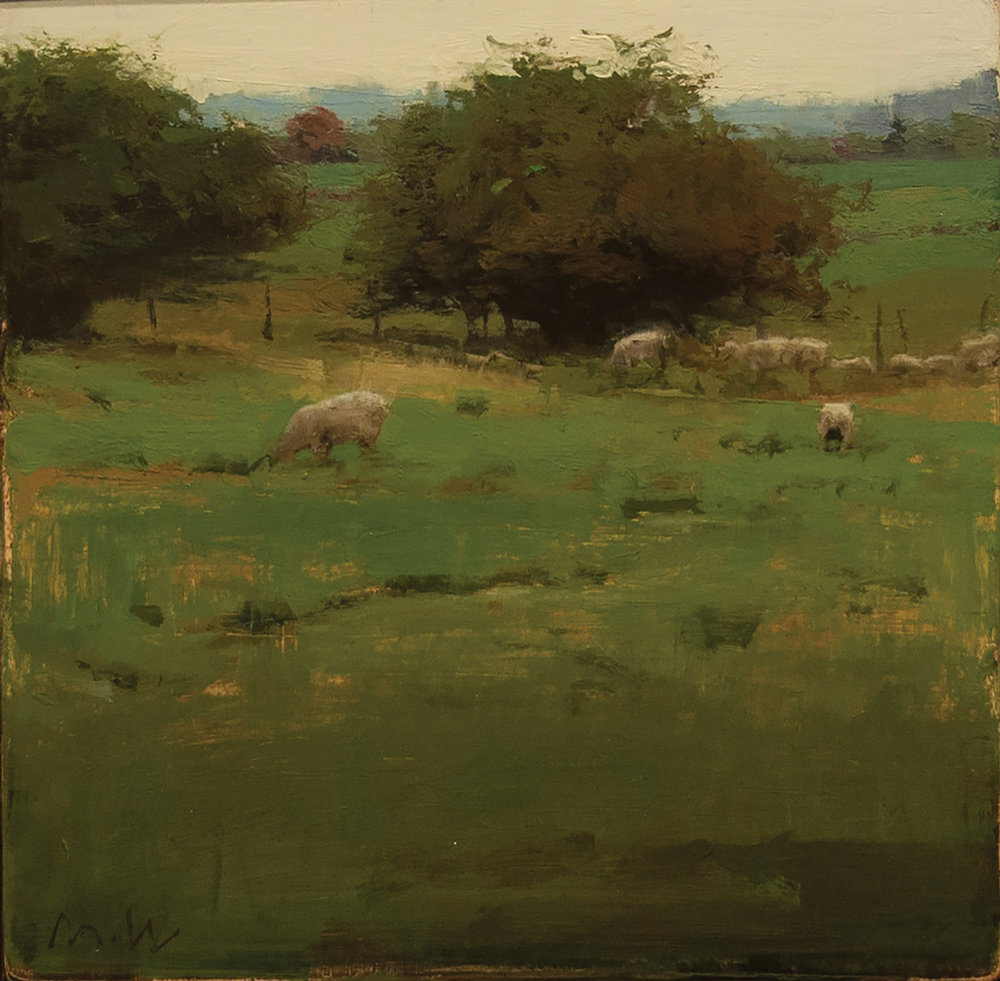 Summer Sheep Pasture.jpg