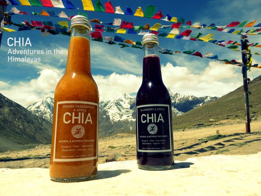 chia-adventures-in-the-himalayas-1024x768.jpg