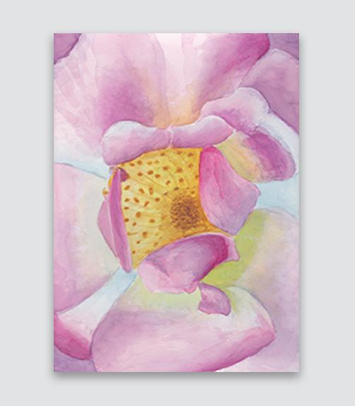 Pink Rose  8x11,  $215