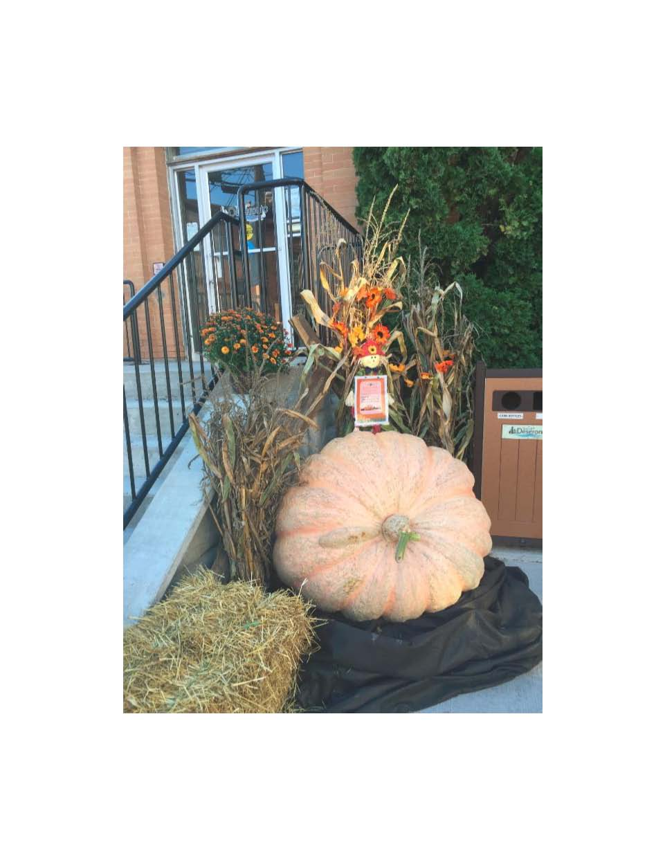 fall-pumpkin
