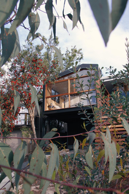 Takt treehouse extension trees.jpg