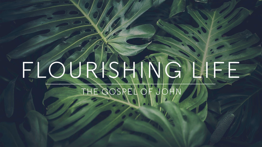 Flourishing Life.jpg