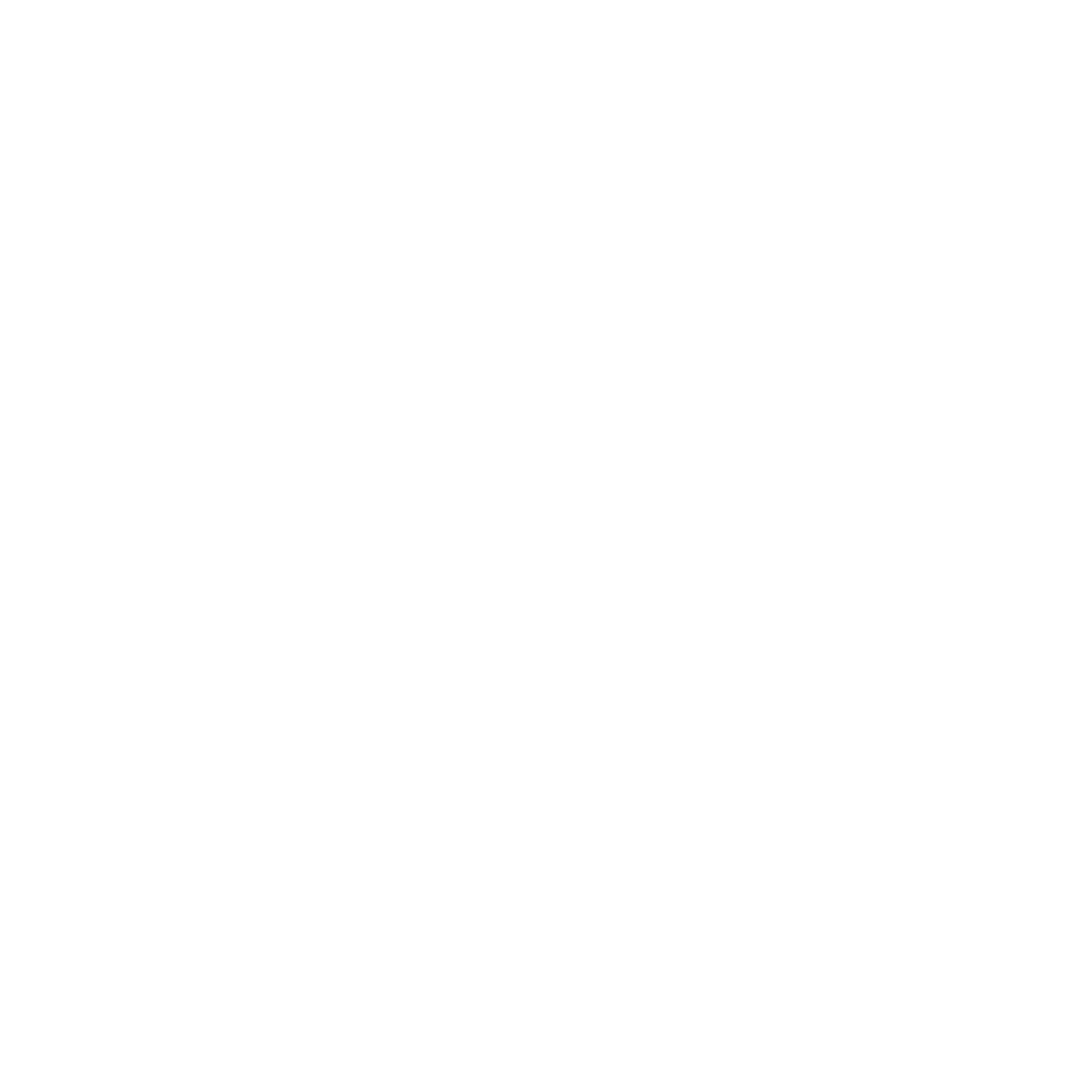 TRAHACE-LOGO  (white)(bem) copie.png