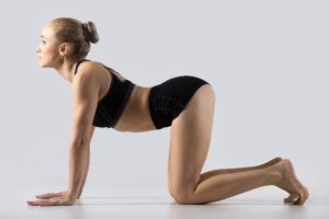 Cow Pose - Here's what the Cow Pose looks like