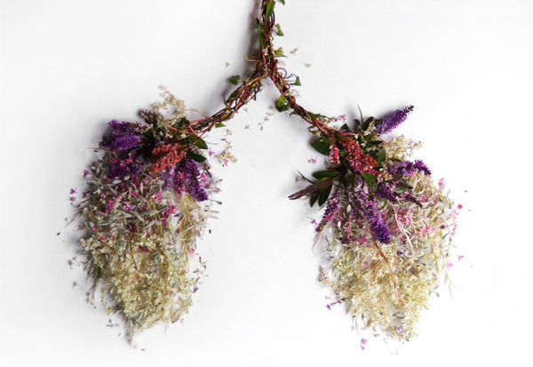 Lungs by Camila Carlow
