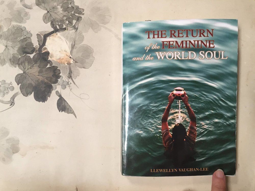 The Return of the Feminine and the World Soul by LLewellyn Vaughan-Lee - With the rise of the feminine, many books have been written on this subject. As a researcher I have not come across an author with a more pure, simple and deep understanding of the rise of the Feminine. Llewellyn takes us deeper beyond ourselves and our personal quest, into the realm where our Soul is connected to the World Soul and how the rise of the feminine is not complete without a deep understanding of the interconnectedness of our awakening consciousness. As a Sufi teacher and mystic, Llewellyn's understandings of the rise [and traps] of this emerging consciousness are of deep value in a time of increasing complexity.I recommend this book to every woman - and man - who is interested in this subject.