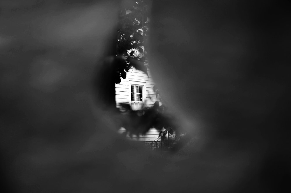 home through a piece of  styrofoam  (2018) |  shop this print